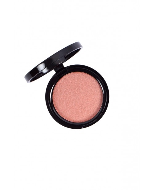 Mini Blusher Silky Long Lasting No.111